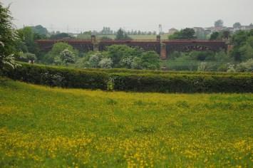 2013 The Clyde Bridge form Blantyre
