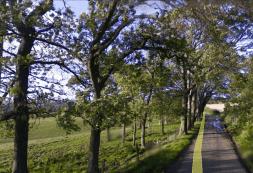 2014 Calderside Road