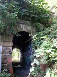 2014 Dandy bridge arch