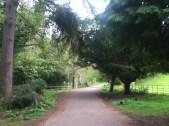 2011 April Greenhall Park (PV)