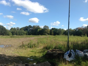 2014 Site of Auchinraith House pictured by P Veverka in August
