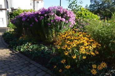 2014 David Livingstone Gardens by Andy Bain (Oct 14)