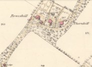1859 Thornhill , The Dandy