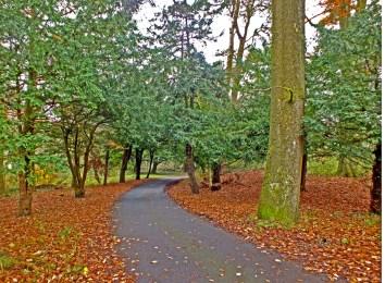 2014 November. Greenhall colours by Robert Stewart