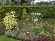 2013 Springtime Gardens, Croftfoot (PV)