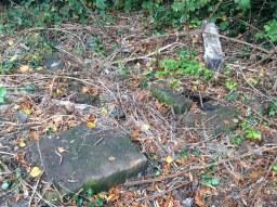 2013 Old 1880 Water Channel near Kirkton Park