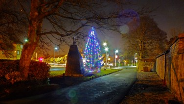 2014 High Blantyre tree. Photo by RDS