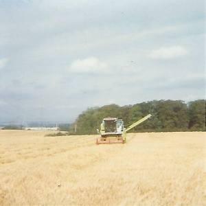 1990s Malcolmwood fields