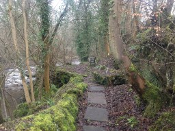 2015 The infilled lade at Mavis Mill (PV)