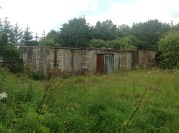 Back of Brown's Land, Auchentibber Aug 2015 (PV)