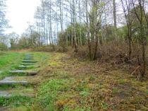 2015 Woodland Paths Barnhill vegetation clearance