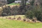 2009 Dysholm Cottage ruins by J Brown