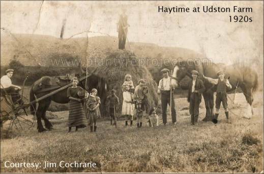 1920s Haytime at Udston Farm wm