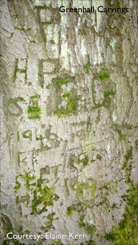 2016 Carvings at Greenhall by Elaine Kerr
