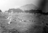1930 Poultry Farm at Springwell, Auchinraith Bing (G Cook)