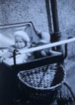 1950 Elizabeth Weaver