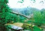 1999 David Livingstone Memorial Bridge demolition