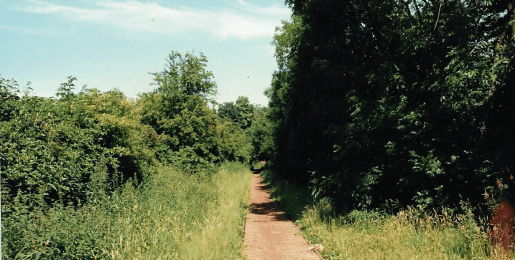 1985 railway verge track