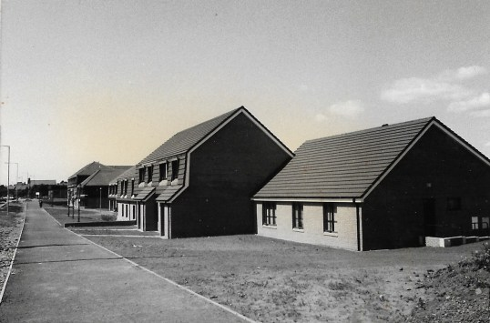 1984 Devlin Grove