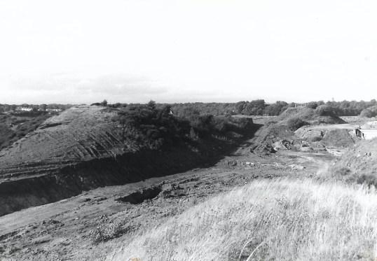 1979 Craighead Bing4