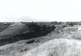 1979 Craighead Bing