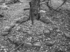 Woodland memorial to WW1