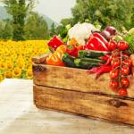 Wooden box filled with a large variety of farm fresh vegetables standing on a wooden table at market with a backdrop of colorful yellow sunflowers growing in a field