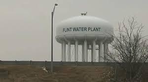 flintplant