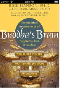Buddha Brain