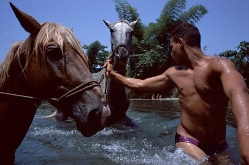 парень и лошадь