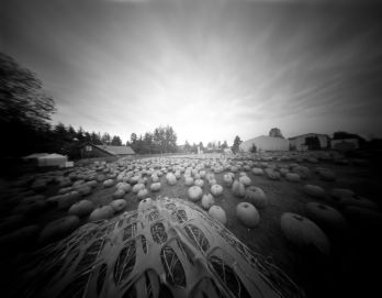 """In October I started my """"One Pinhole A Day"""" Project"""