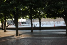 Reflecting Pool: trees lining the fountain, view from Huntington Ave