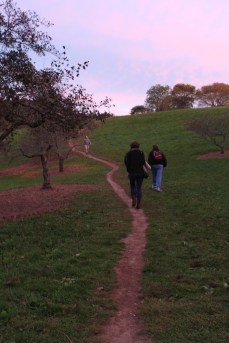 Arnold Arboretum: My friends Kim and Tom hiking up the the peak at sunset