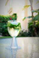 Mint-cucumber cooler (non-alcoholic) Simple syrup (like a tablespoon per glass), sliced cucumber, fresh mint leaves, stirred with ice