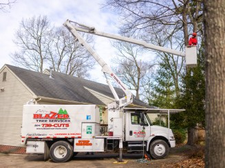 Tree pruning / tree trimming in a bucket truck: Blazer Tree Services, Richmond VA area