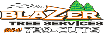 Blazer Tree Services - Richmond VA area