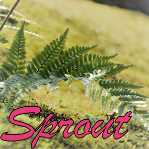 【EA-BANK】SproutがEA-BANKに採用されました。