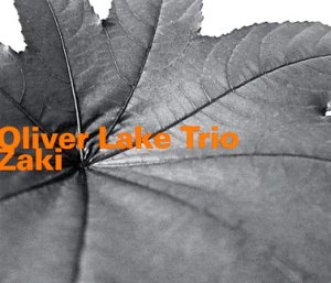 Lake-Zaki_ed