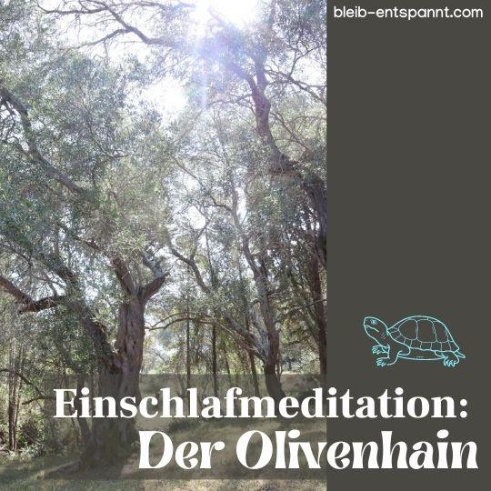 Meditation Schlafen