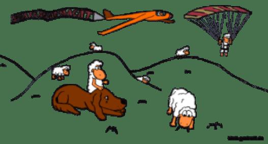 gemalte Schafe