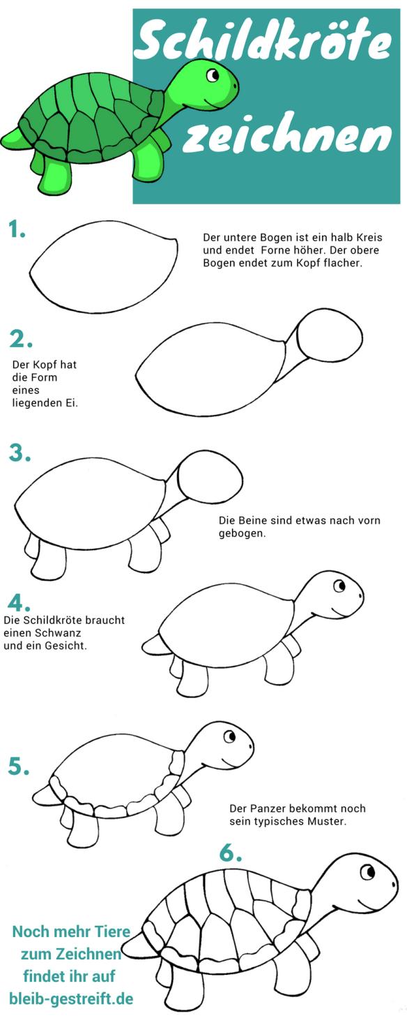 schildkr te zeichnen lernen eine anleitung in 6 schritten. Black Bedroom Furniture Sets. Home Design Ideas