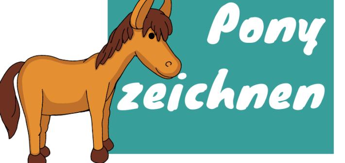 Pony zeichnen lernen