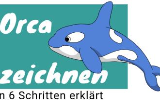 Orca zeichnen lernen