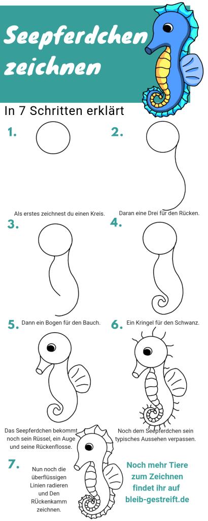 Seepferdchen zeichnen lernen