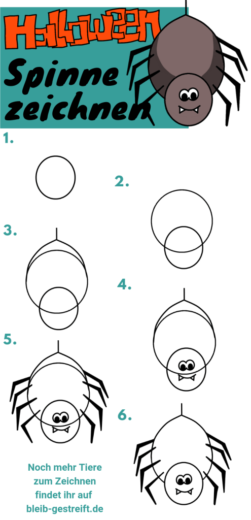Anleitung Spinne zeichnen