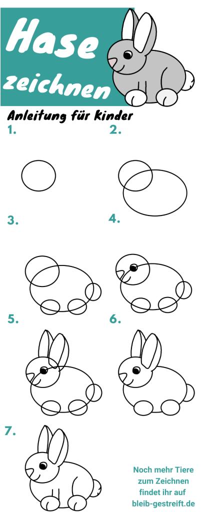Anleitung zum Hase zeichnen