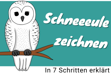 Schneeeule cover