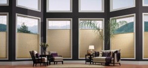Honeycomb Blinds from Blended Blinds Best of Colorado