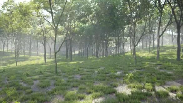 Render - Vegetation Addon