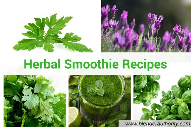 Herbs for Smoothie and Herbal Smoothie recipes